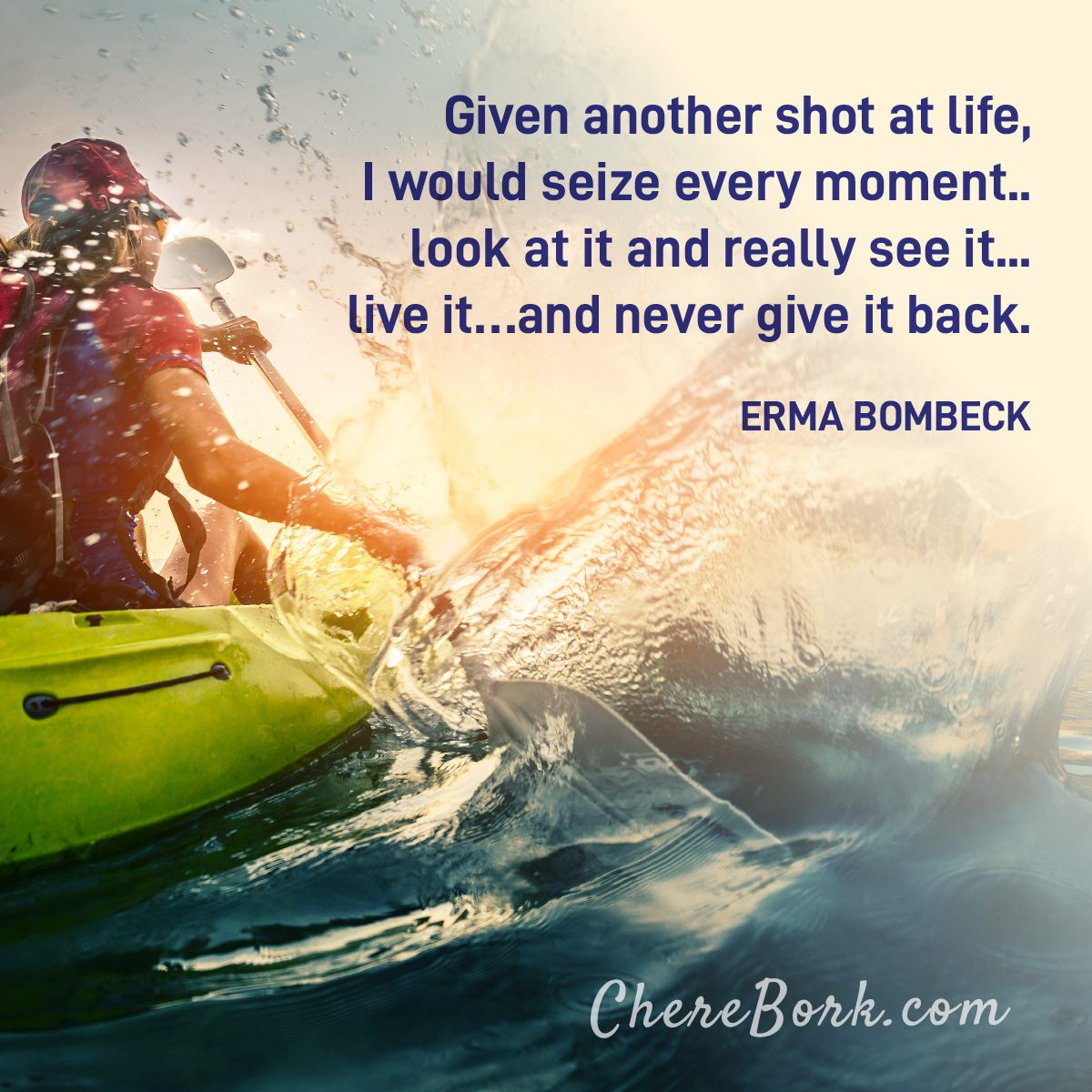 Given another shot at life, I would seize every moment.. look at it and really see it... live it...and never give it back. -Erma Bombeck