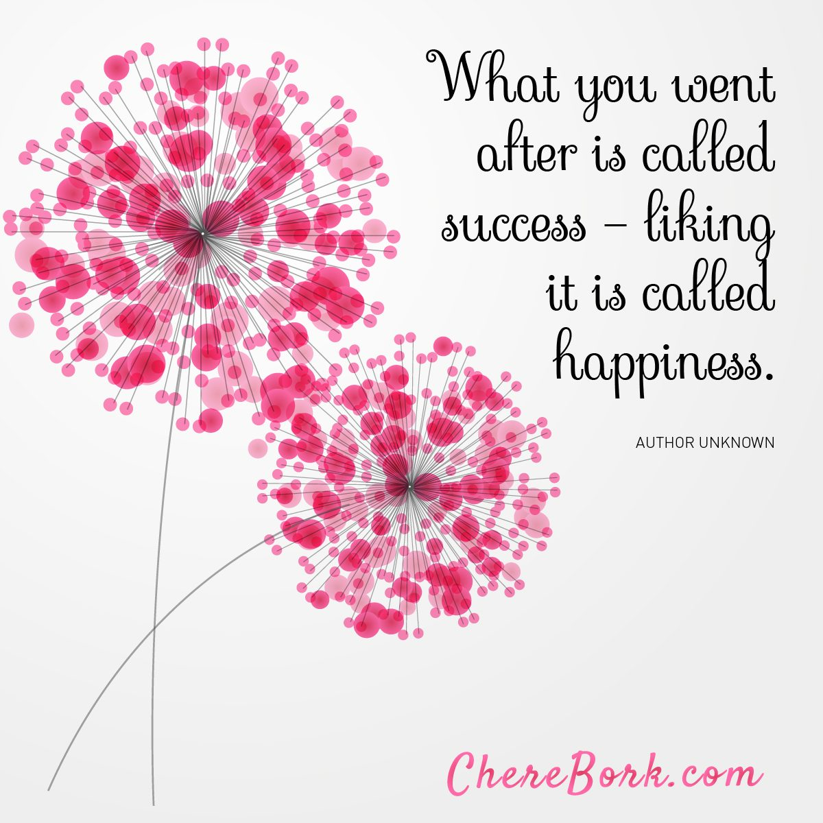 What you went after is called success —Liking it is called happiness. -Author Unknown