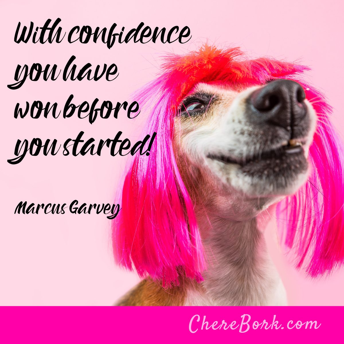 With confidence, you have won before you started! -Marcus Garvey