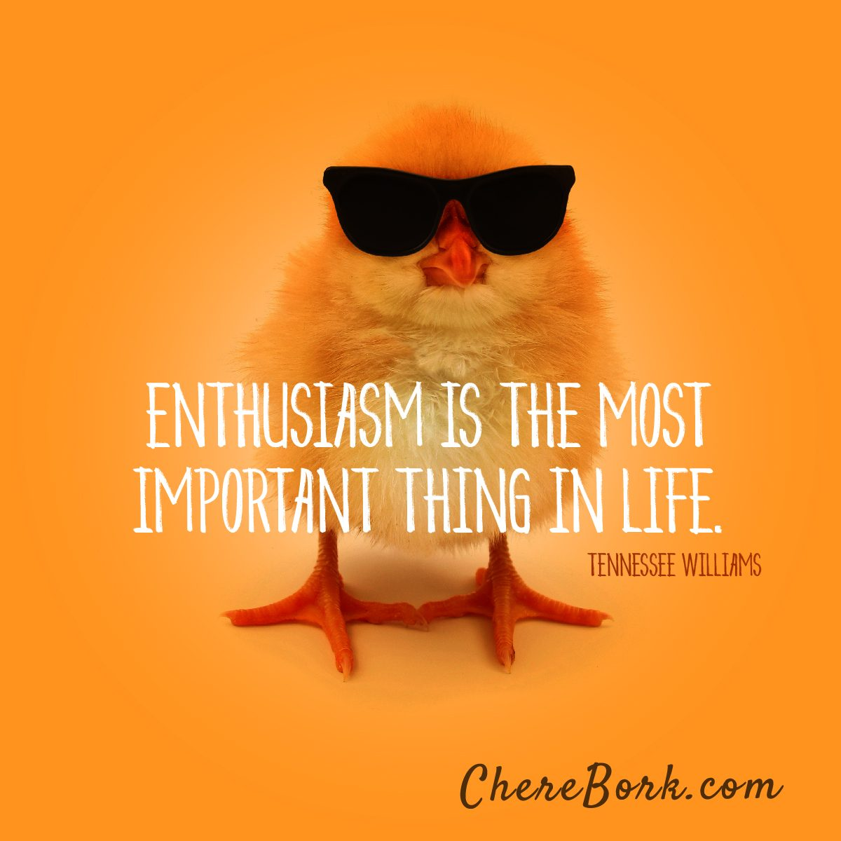 Enthusiasm is the most important thing in life. -Tennessee Williams