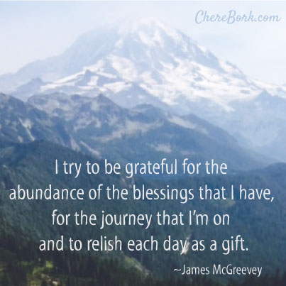 I try to be grateful for the abundance of the blessings that I have, for the journey that I'm on and to relish each day as a gift. – James McGreevey