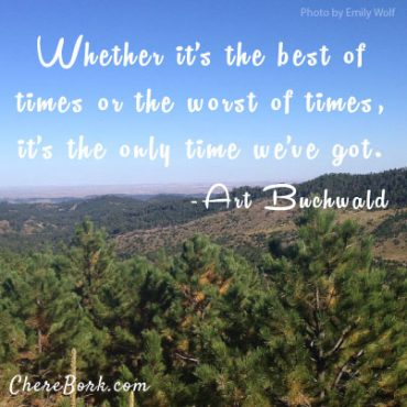 Whether it's the best of times or the worst of times, it's the only time we've got. – Art Buchwald