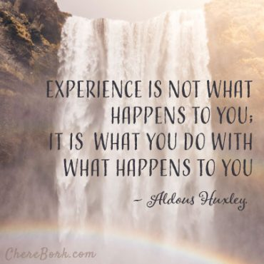 Experience is not what happens to you, it is what you do with what happens to you. – Aldous Huxley