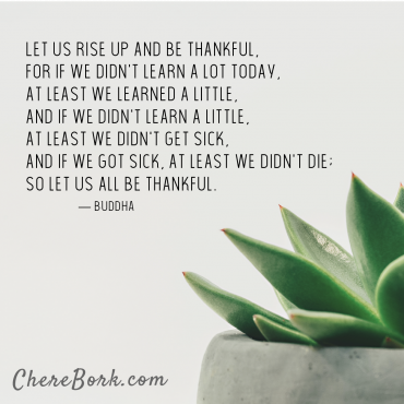 Let us rise up and be thankful, for if we didn't learn a lot today, at least we learned a little, and if we didn't learn a little, at least we didn't get sick, and if we got sick, at least we didn't die; so let us all be thankful. -Buddha